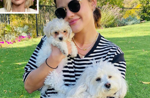 Meet Ethel! Lucy Hale Adopts Adorable Puppy and Thanks Kristen Bell for Fostering Her
